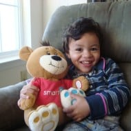 A New Toy In the House: Smart-E-Bear