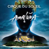 "Cirque du Soleil ""Amaluna"" at National Harbor {Review}"