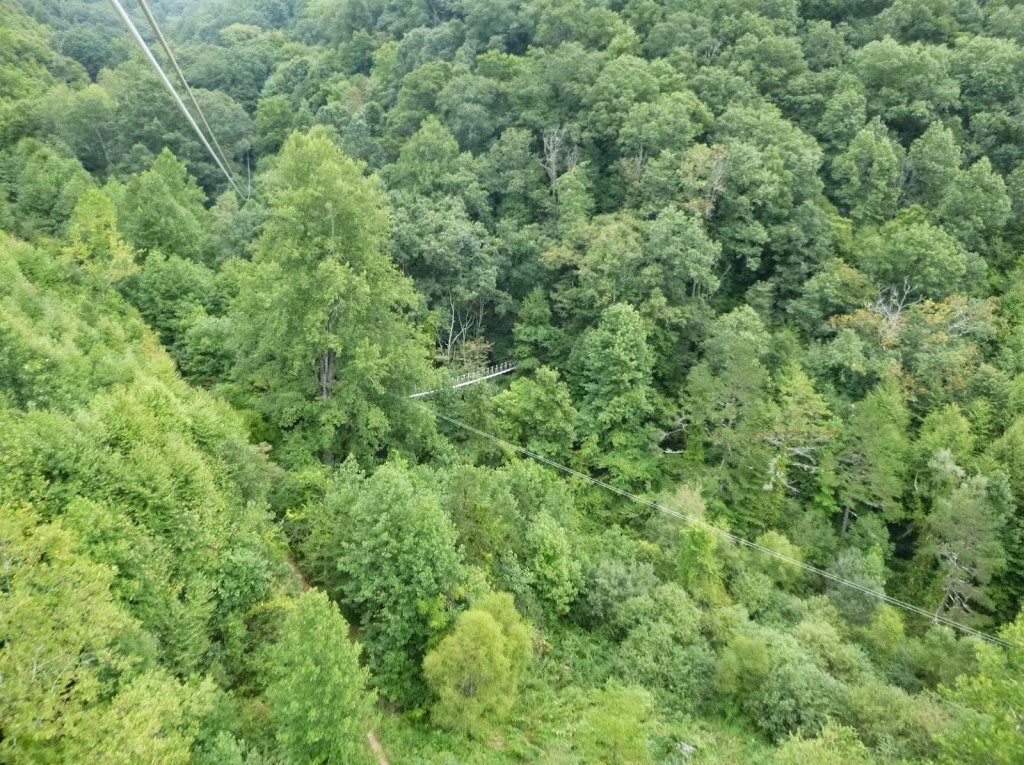 One Of The High Ziplines We Took Some Our Friends Said Wow You All Did That Scary Lol