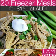 Frugal Idea: 20 Freezer Meals for $150 (Gluten-Free Adaptable)