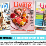 FREE 1 Year Subscription to Martha Stewart Living Magazine
