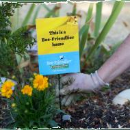 FREE Bee-Friendlier Wildflower Seeds Packet from Cascadian Farm