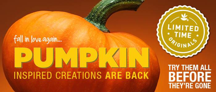 pumpkin-at-giant