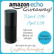 Amazon Echo Giveaway!