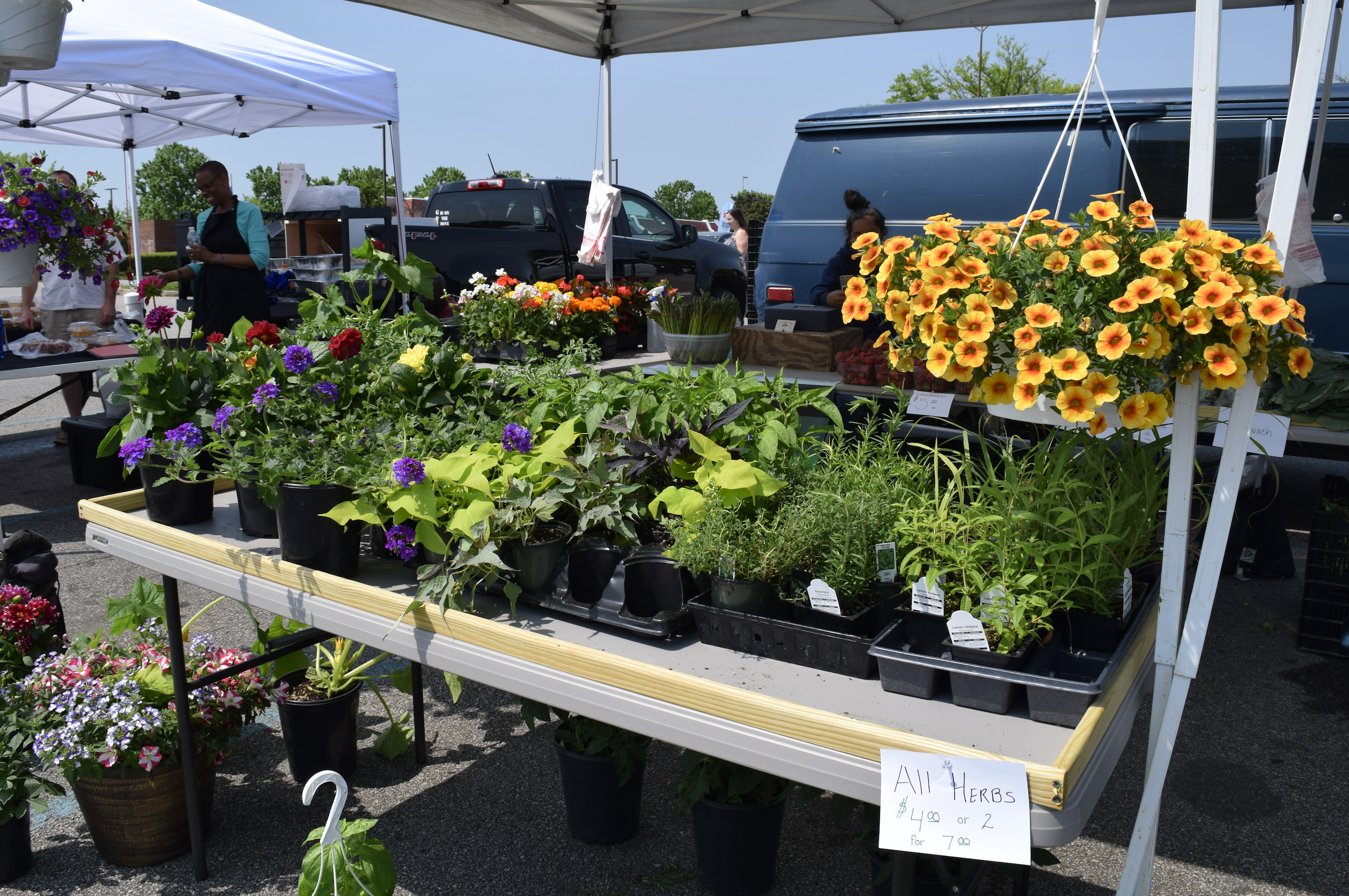 "Find fresh plants and flowers and herbs at ""The Market at Potomac Mills"" in Woodbridge, Virginia- a farmers market open from late April to late October, 2017."
