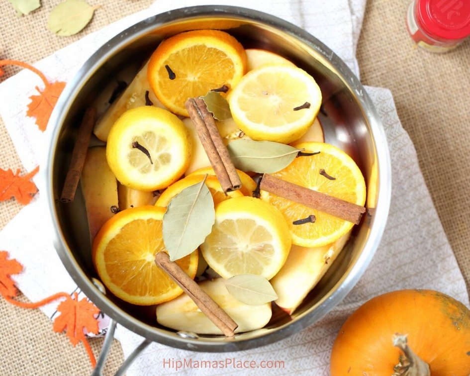 Here's how to make your own DIY Fall Simmering Potpourri!