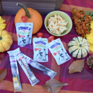 Tips for a Successful and Fun Fall Picnic + Why I Choose Stonyfield® Organic YoKids® Yogurts for my Kids
