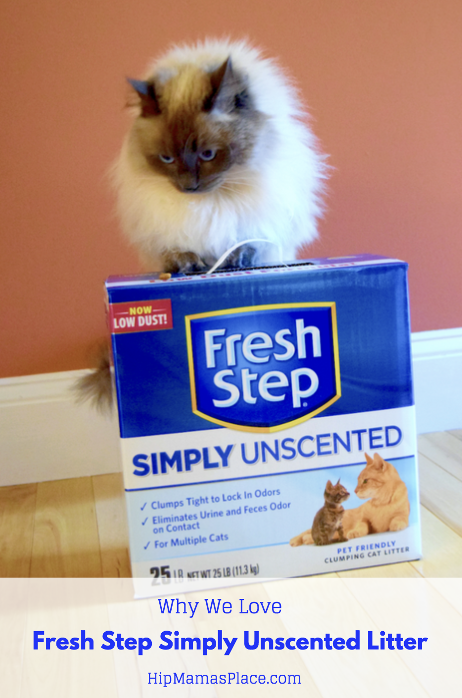 October 29 is National Cat Day and we are celebrating it over @ HipMamasPlace.com! For Oscar's cat litter, we love Fresh Step Simply Unscented Litter!