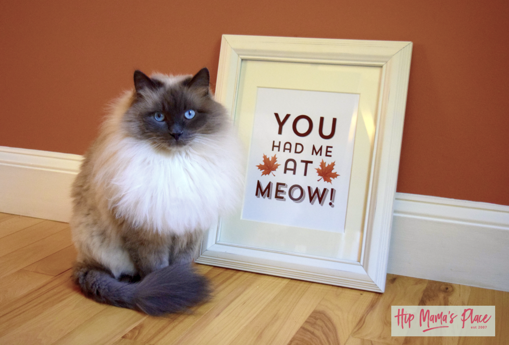 "Get your free printable Fall art ""You Had Me At Meow!"" at Hip Mama's Place!"