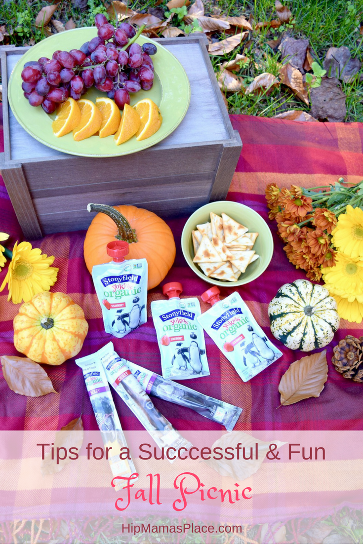 Love going on a picnic with your family? Here are some tips for a successful and fun fall picnic!