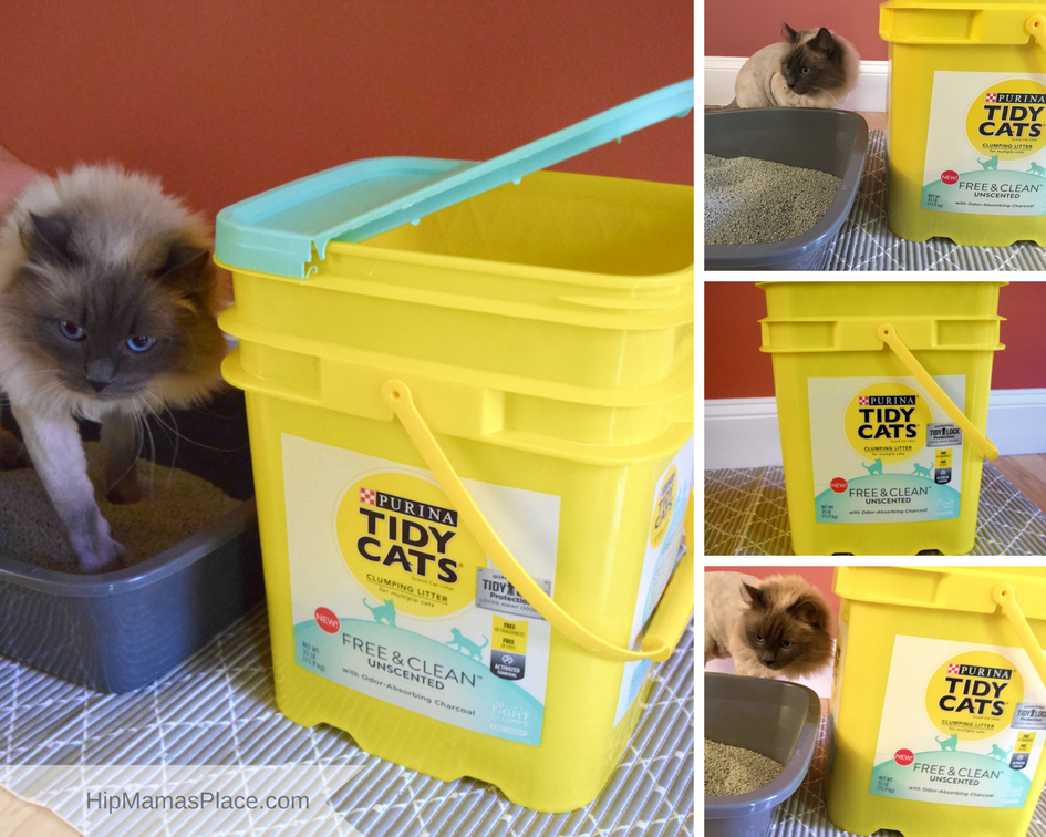 My husband and I have tried many cat litters, but the new Purina® CATS® Free & Clean™ Unscented Clumping Litter won us over.