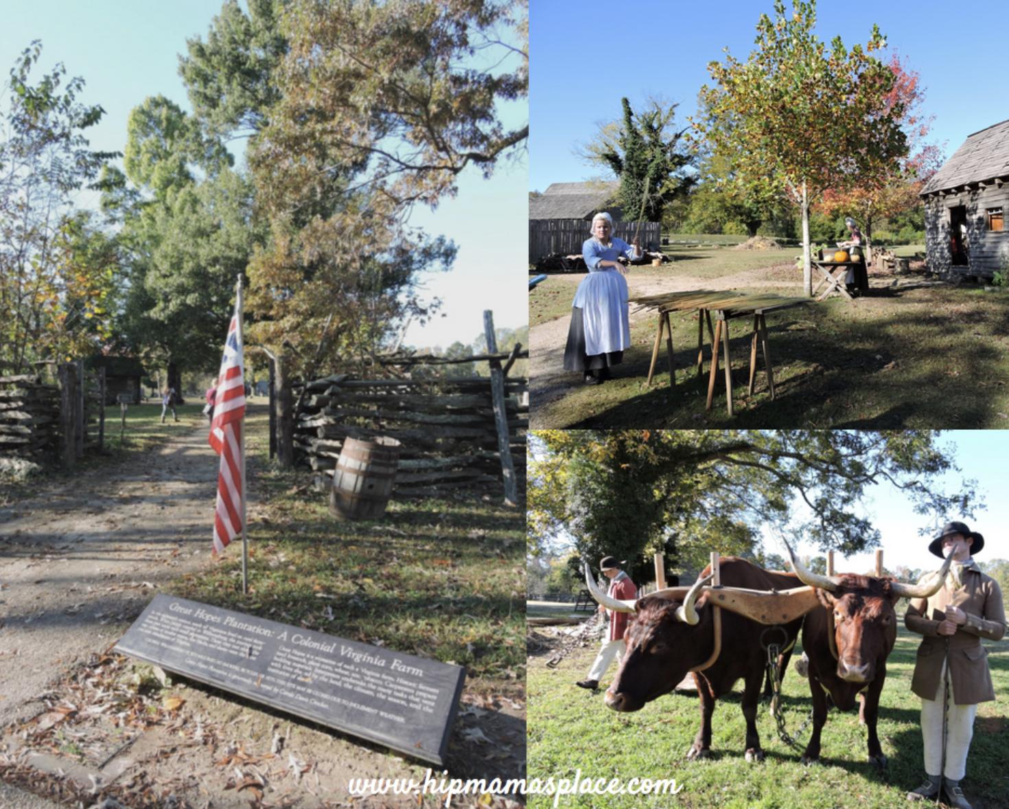 Chocolate History Tour in Williamsburg, Virginia