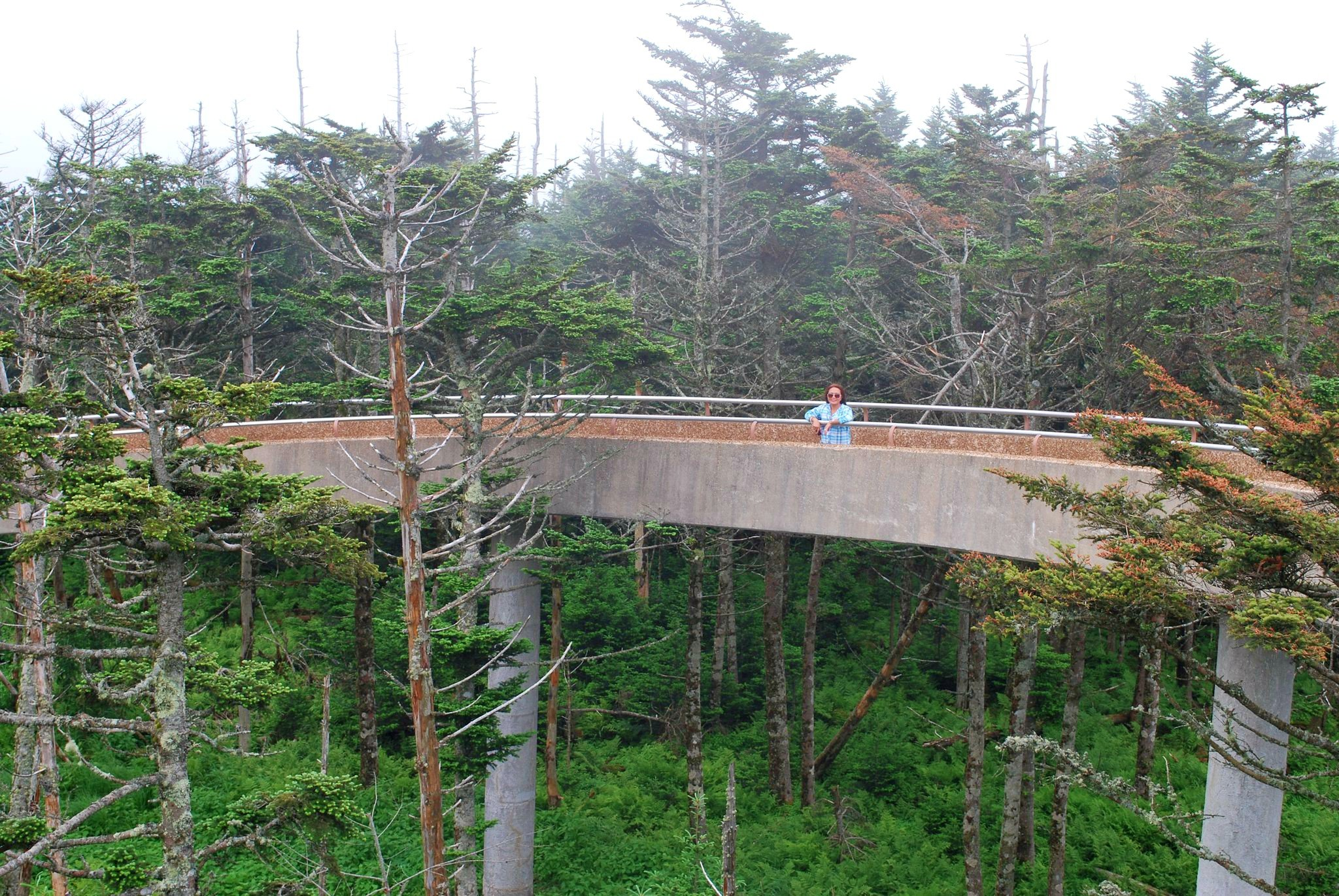 Enjoying the mountain views from the tp of the Clingmans Dome in Pigeon Forge, TN