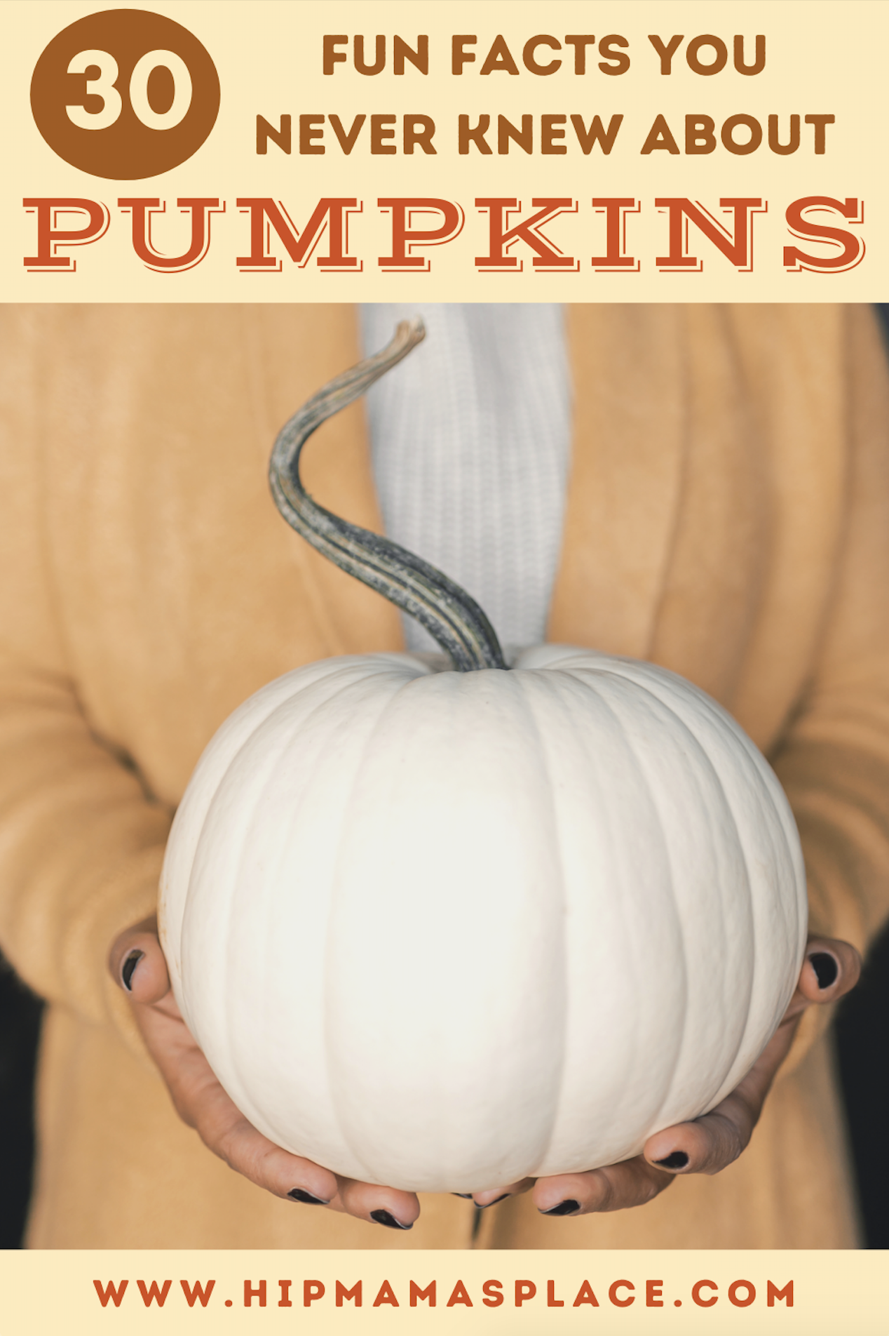 How well do you know about pumpkins? Here are 30 fun facts about pumpkins or pumpkin trivia to learn more about this Fall favorite fruit!